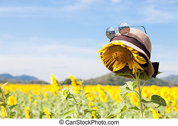 Wear a hat and sunglasses for sunflower.