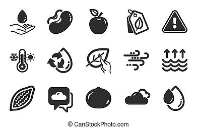 Weather forecast, Evaporation and Beans icons simple set. Cloudy weather, Thermometer and Macadamia nut signs. Organic tested, Water care and Bio tags symbols. Flat icons set. Vector