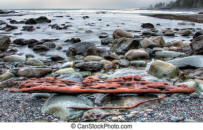 Weathered Drift Wood On Rocky Shore - Rocky shore with waves...