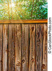 Weathered fence with sun shining over through tree branches