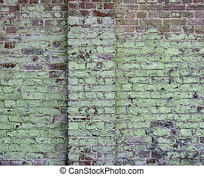 Weathered old damp wall showing green lichen growth with space for copy