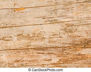 Weathered wood background - old weathered wood background