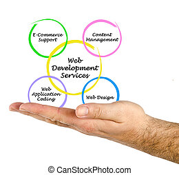 web, разработка, оказание услуг