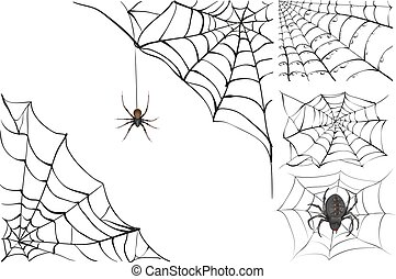 Web and black poisonous spider. Set Halloween accessory. ...