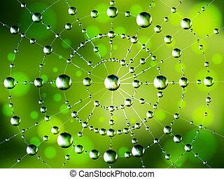 web, d, hintergrund, spinne
