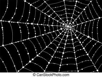 web, druppels, dauw