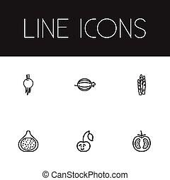 web, essere, set, asparago, mobile, cookware, fico, editable, veggie, usato, include, simboli, lattina, infographic, ui, icons., 6, tale, more., design.