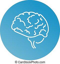 Web line icon. Human brain. Vector illustration eps 10