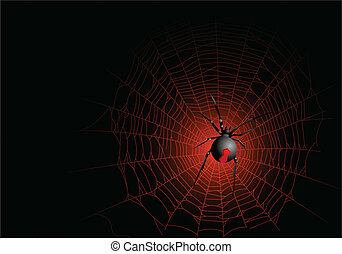 web ragno