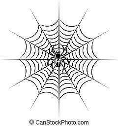 web, ragno