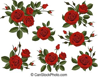 Web - Red rose boutonniere. Set for floral design of a...