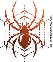 web., spinne
