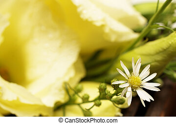 Wedding #17 - Close-up of a bouquet with roses and daisies -...