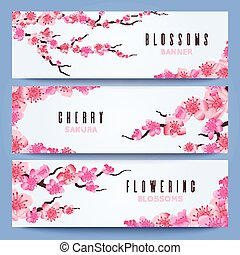 Wedding banners template with spring japan sakura, cherry blossom