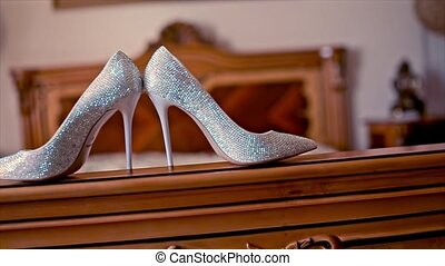 Wedding Bride Shoes Stand on the Ded
