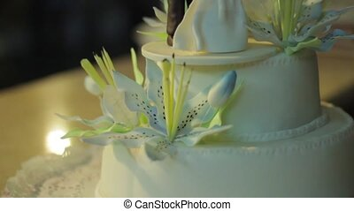 wedding cake with the bride and groom figurine