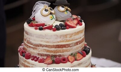 Wedding celebration cake in rustic style with owls figures...
