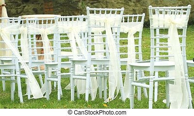 Wedding chairs decorated with silk ribbons