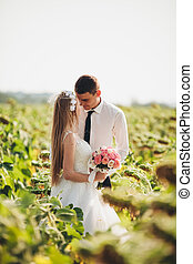 Wedding couple kissing and posing in a field of sunflowers.