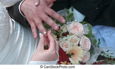 Wedding Couple Rings - Wedding Couple