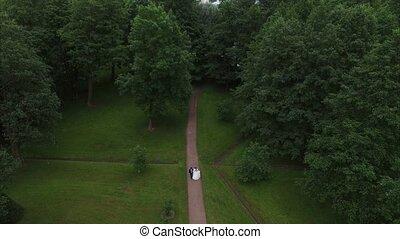 Wedding couple walking in park. 4K aerial