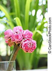 wedding flowers from pink lotus flower.