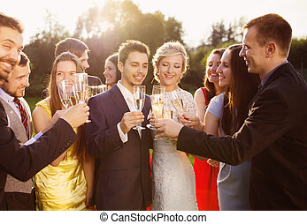 Wedding guests clinking glasses with newlyweds