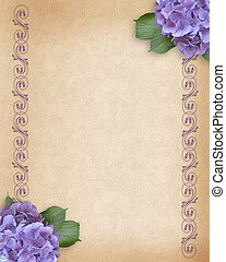 Wedding Hydrangea background - Image and illustration...