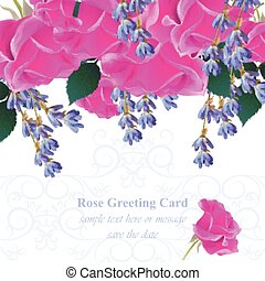 Wedding Invitation Card vector. Roses and lavender flowers. Fuchsia pink colors
