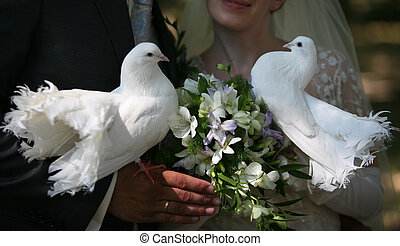 Wedding pigeons in hands of a newly-married couple