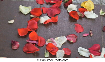 Red, white rose petals scattered on paving slab - Wedding....