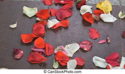 Red, white rose petals scattered on paving slab
