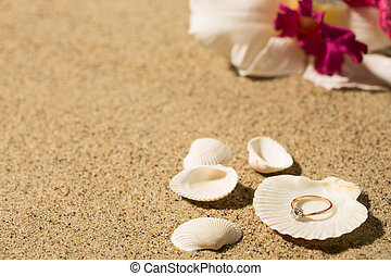 Wedding ring in a shell