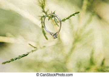 Wedding ring in the grass