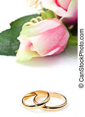 wedding rings and pink roses on white background