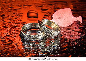 Wedding Rings And Rose Petals