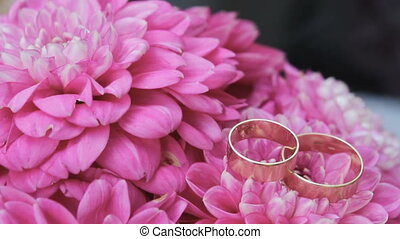 Wedding rings are on pink flowers, Wedding attributes, background