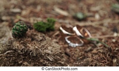 Wedding rings at nature