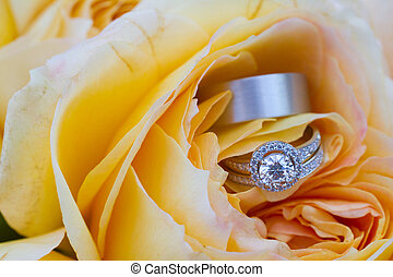 Wedding Rings at Reception - The bride and groom wedding ...