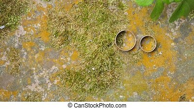 wedding rings of white gold on a stone on a background of...