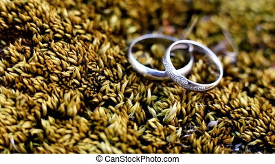 Wedding rings on floral background