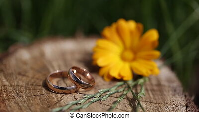 Wedding rings on flowers background wood