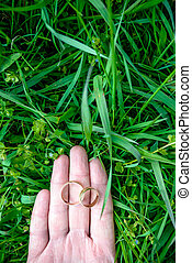 wedding rings on green background