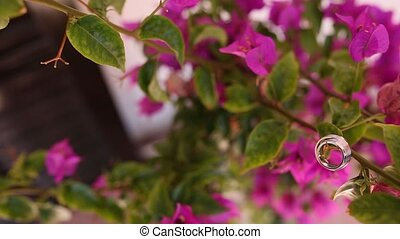 Wedding rings on the bougainvillea. Wedding jewelry....