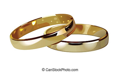 wedding rings - wedding rings illustration