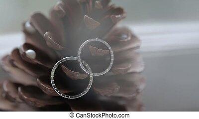 Wedding Silver Rings on the cone macro closeup shoot diamon...