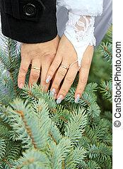 wedding theme, holding hands