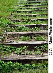 Grass and weeds take over a set of wooden steps up a hillside
