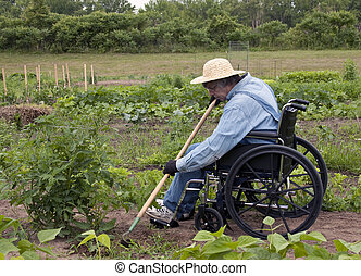 physically challenged man in a wheelchair weeding his garden