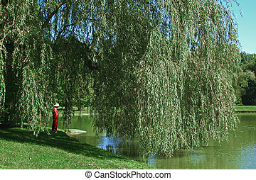 Weeping Willow - Woman in red reflects under a Weeping...